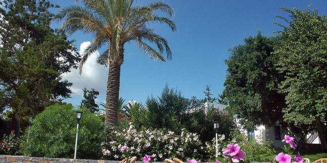 100 Orte und Lokale, die Du in Marrakesch gesehen haben musst