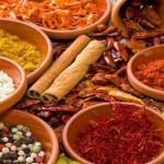 Kurzurlaub nach Marrakesch